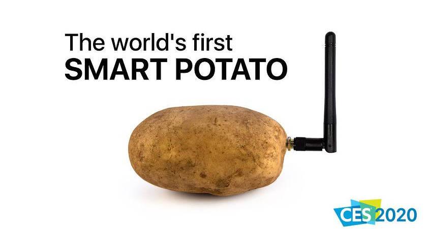 На выставке CES 2020 появилось устройство для общения с картофелем!??
