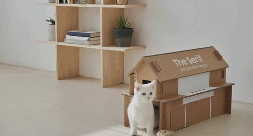 Качество в мелочах: коробки Samsung получили награду CES Innovation Awards