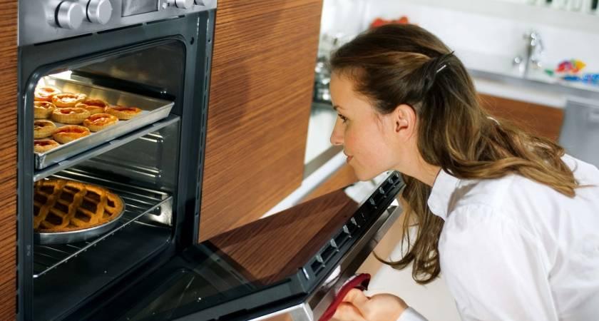 Какая духовка лучше — электрическая или газовая?