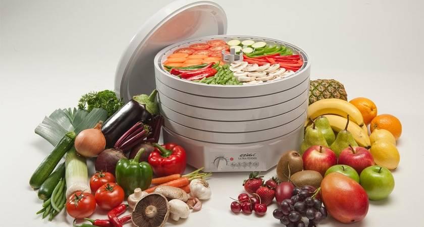 Как выбрать сушилку для фруктов и овощей?